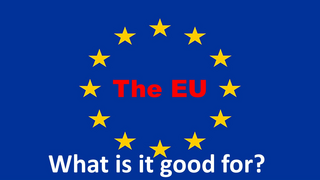What the EU is good for